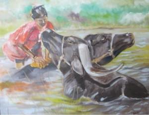 Wasserbüffelwäsche